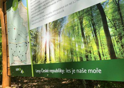 2019-1.5.-Forest-Walking-stezky-Brno-Prehrada-1-z-19-11