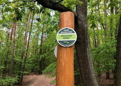 2019-1.5.-Forest-Walking-stezky-Brno-Prehrada-1-z-19-7
