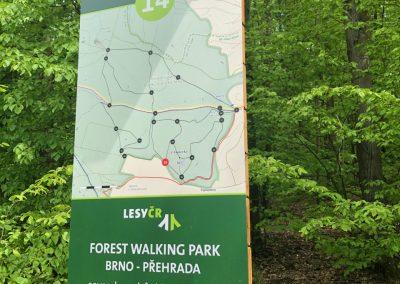 2019-1.5.-Forest-Walking-stezky-Brno-Prehrada-1-z-19-9-1